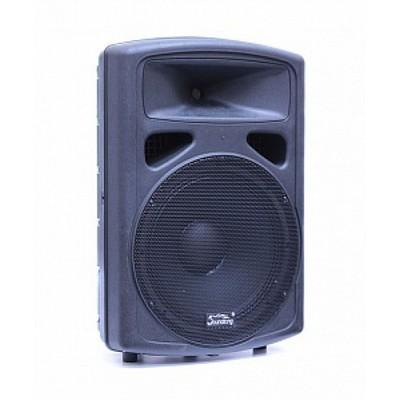 Soundking FP215A Активная акустическая система