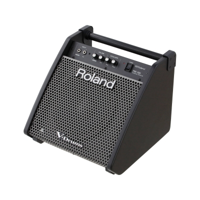 """ROLAND PM-100 монитор барабанщика 10""""+3"""" 30Вт"""